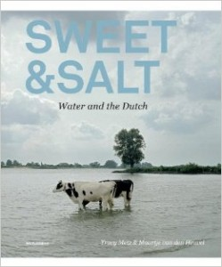 Sweet & Salt  Water & Dutch - Meteek Supply
